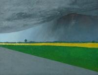 Storm, Foieni